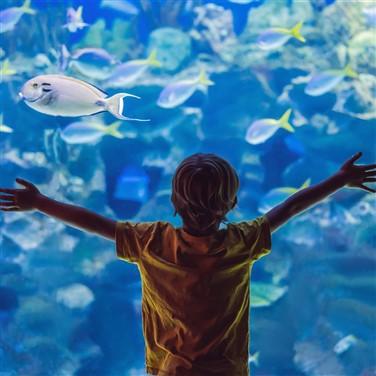 Bristol Zoo & Aquarium 2022