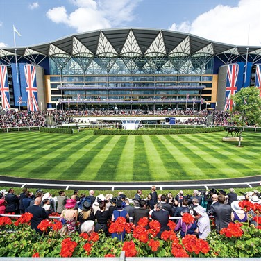 Ladies Day at Ascot 3 Days