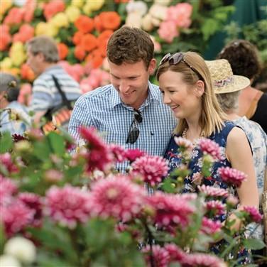 Harrogate Spring Flower Show 2022