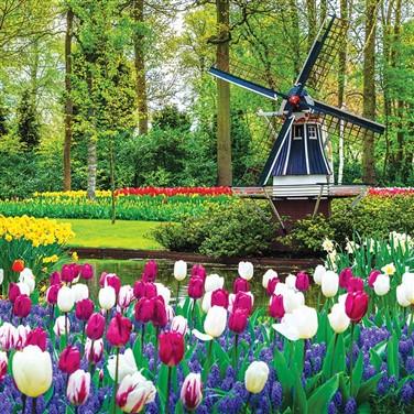 Keukenhof Gardens Mini Cruise