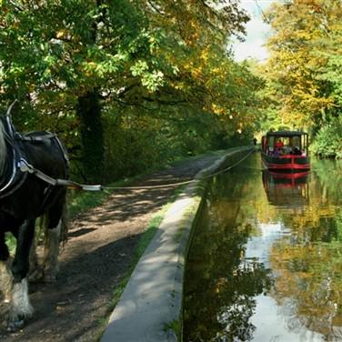 Llangollen Wharf horse Drawn Canal Cruise