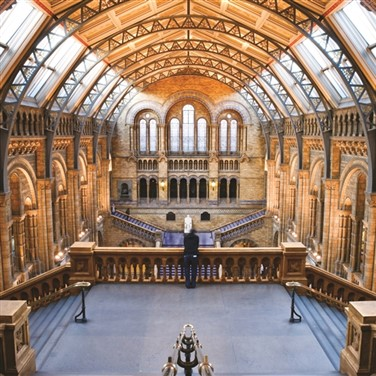 Natural History Museum or London