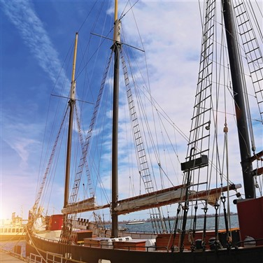 Tall Ships at Antwerp 2022