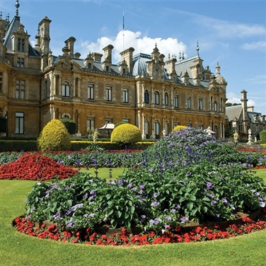 Rose Gardens & Tulips of Waddesdon Manor