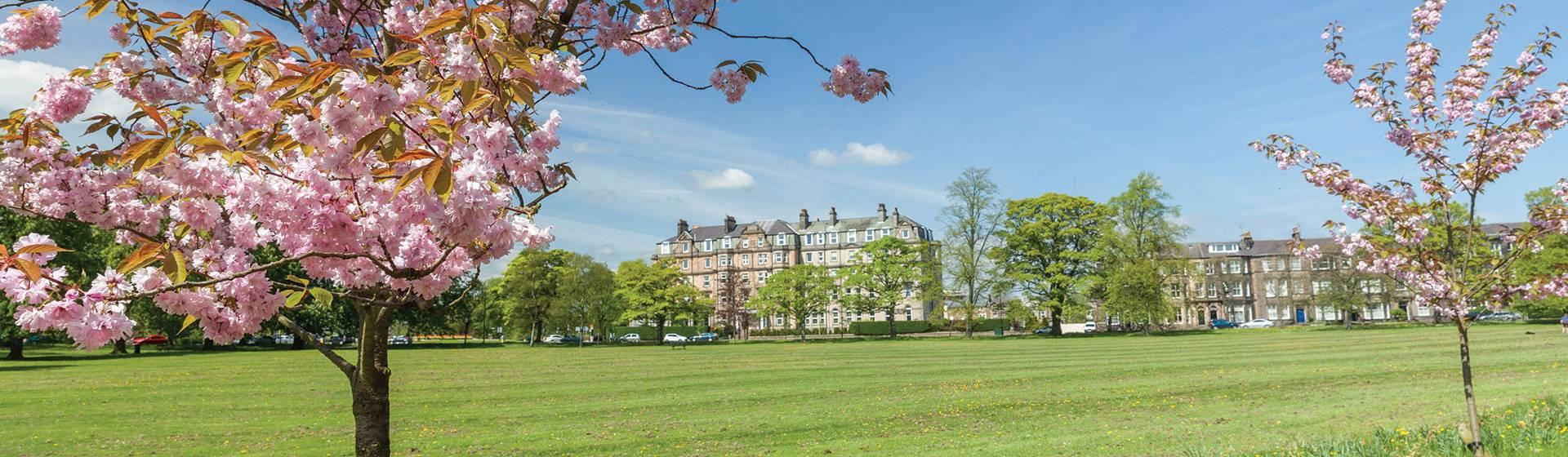 Harrogate & Holmfirth in Springtime