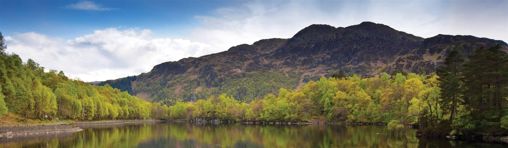 Scottish Wildlife Tour 2022